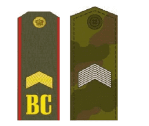 Погоны старшего сержанта