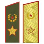Погоны генерала армии