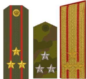 Погоны полковника